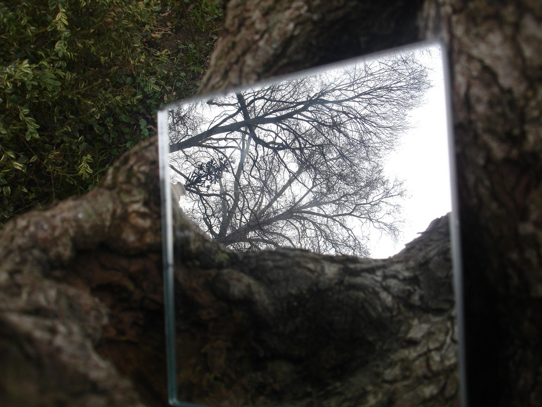 It padova miroirs reflets paysage et patrimoine for Miroir sans reflet
